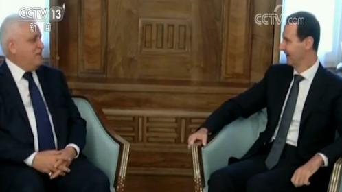 叙总统:将反抗土耳其公然侵略