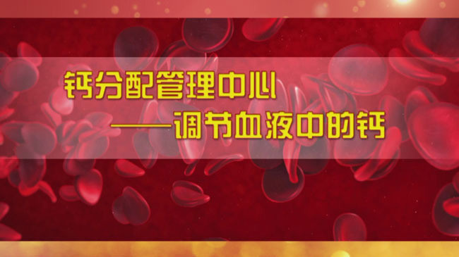《养生堂》警惕越补越危险的钙