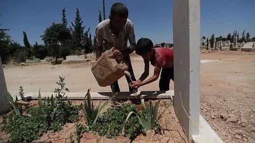 """叙利亚8岁儿童成掘墓工""""如果是小孩子尸体,我们亲手为他挖墓"""""""