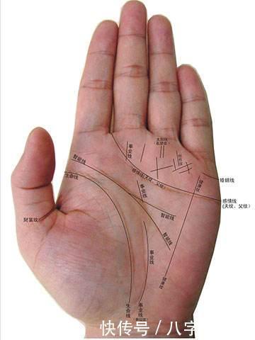 女生掌纹_如果生活中有幸遇到双手带有川字掌纹的女生的男士应该好好把握哦
