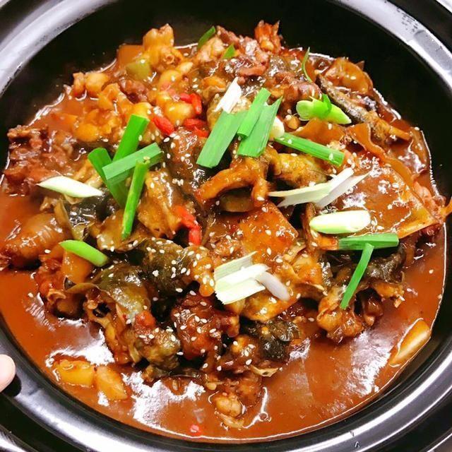 舌尖上的美食,朋友来武汉旅游如何招待?我带她去吃甲鱼焖公鸡图片
