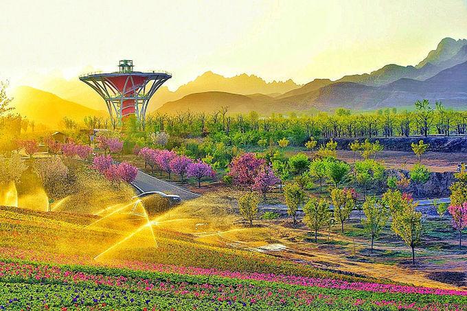 明媚的风景总是能让人眼前一亮,趁着此时春光正好,不妨踏入狼牙山万亩