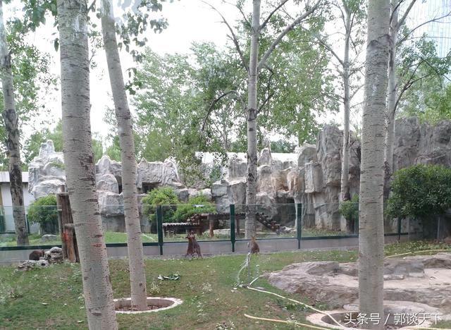 逛郑州动物园,跟着我的游园攻略走!