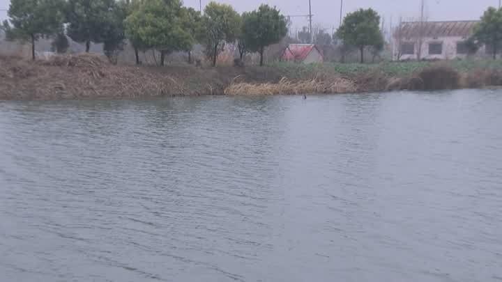 扬州宝应:河湖长制全面推行,河道湖泊面貌一新