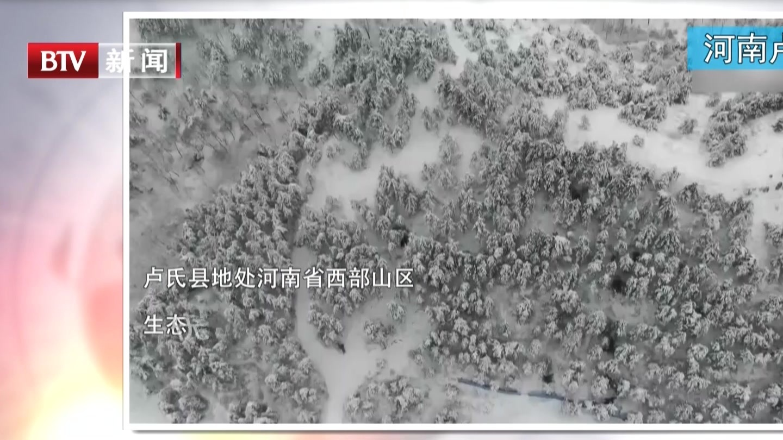 河南卢氏:雪景如画  分外美丽