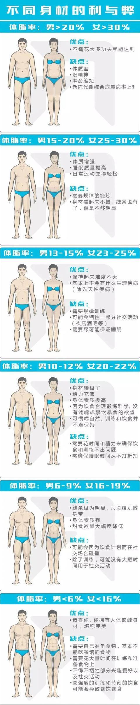 率 脂肪 女性 体