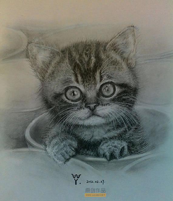圆圆的脸蛋圆圆的眼睛,多么可爱的小猫咪呀,是不是也像王洋童鞋小