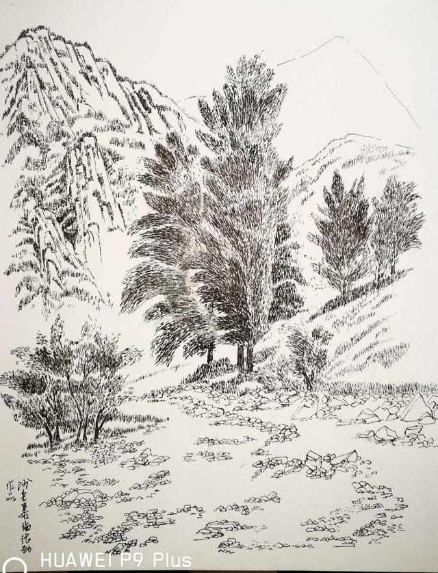 1,王剑桦的钢笔画作品 3,叶志军的钢笔画作品第一百四十二幅--沾衣欲