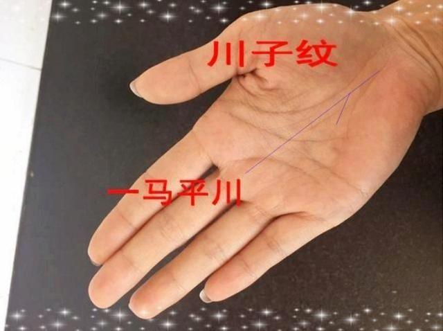 """手相中,称命运线为""""玉柱线""""又叫""""事业线"""",命运线从手掌根部直接穿过"""