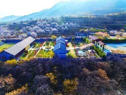 """青岛35个社区和村被评为""""山东省森林村居"""""""