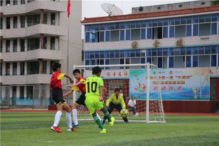 西山学校足球队获2017年江西省小学生(五人制)足球锦标赛亚图片