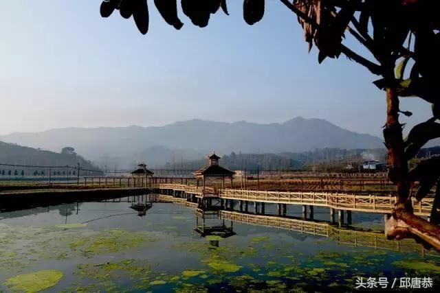 刘屯村位于松溪县茶平乡东南部,与政和县毗邻,地处省级风景名胜区