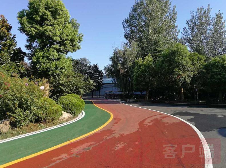 城市森林植物园,乘坐电瓶车深入园区深处,满眼苍翠欲滴,道路红绿相间