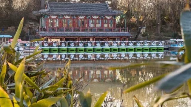 京城日记--公园