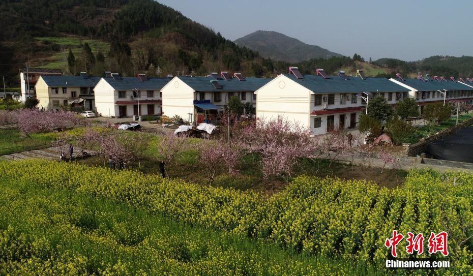 四川青川阳春三月风景如画