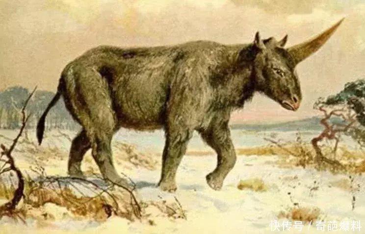 种巨大的史前物种,第4种曾生活中国,体长达30米