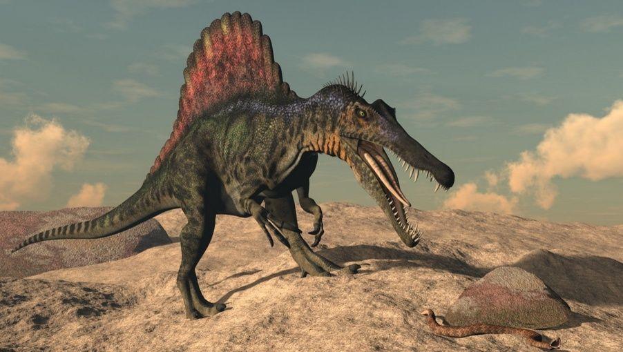 霸王龙目前的化石证据与理论推测都比较完善,这种恐龙身体强壮,体长12
