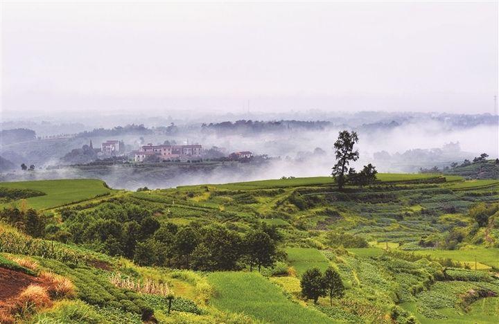 崇仁镇淡山村: 隐藏在大山里的美景