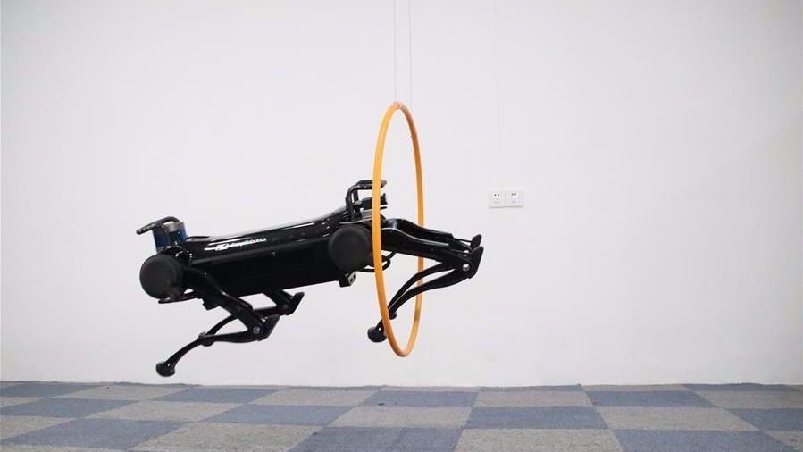 """新一代""""绝影""""四足机器人亮相:跑跳跃障动作流畅"""