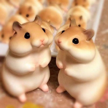 """婆婆看着这一大锅的""""老鼠""""很惊讶,不相信的戳了戳还真是热乎乎的面食."""