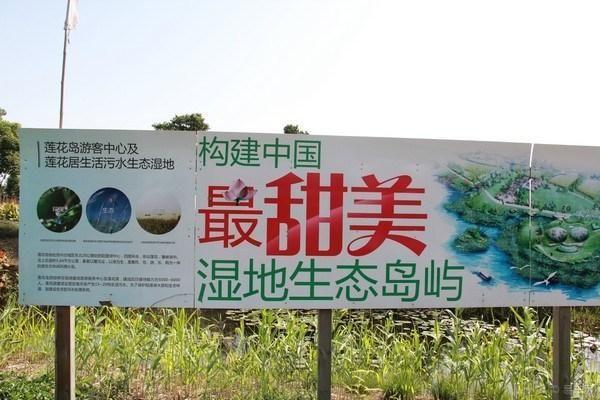 苏州阳澄湖莲花岛一日游记