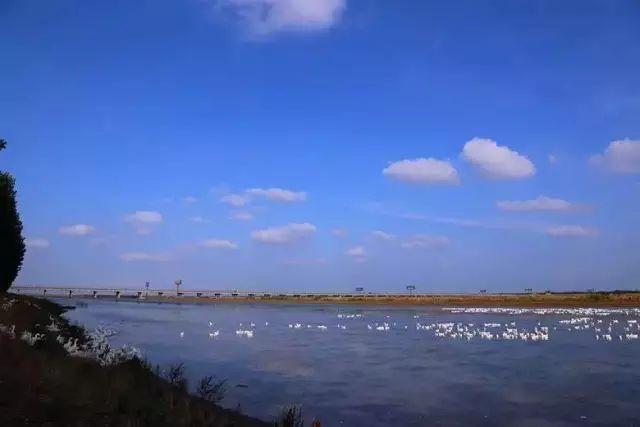 """旅游景点 大伊山风景区 开山岛被誉为 """"海上布达拉宫""""."""