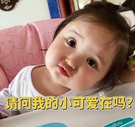 有一个感受女儿的表情是长成?猪表情包掉了图片