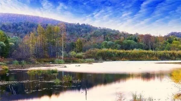 地址:尚志市亚布力林业局虎峰实验林场虎峰岭生态风景区