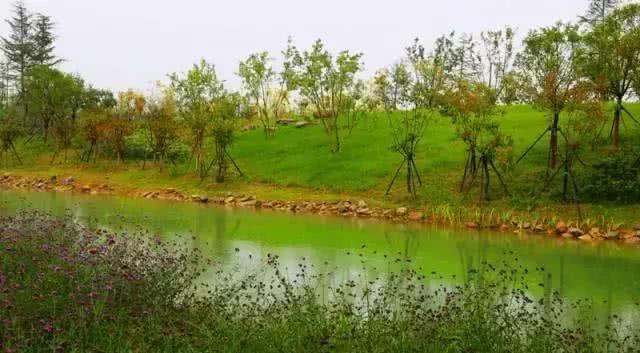 郑州双鹤湖土地网拍