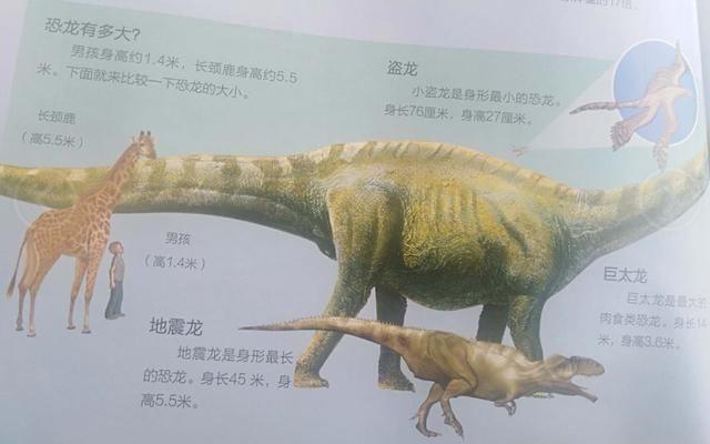 科普知识恐龙趣味,让你更了解这种史前ag游戏直营网|平台