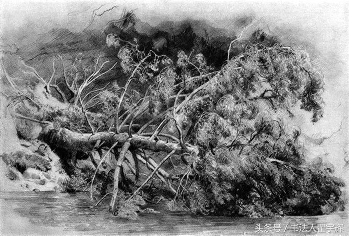 美不胜收,著名画家希施金12幅素描风景作品欣赏