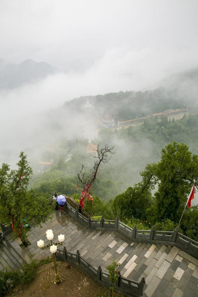 避暑胜地仲山生态森林公园
