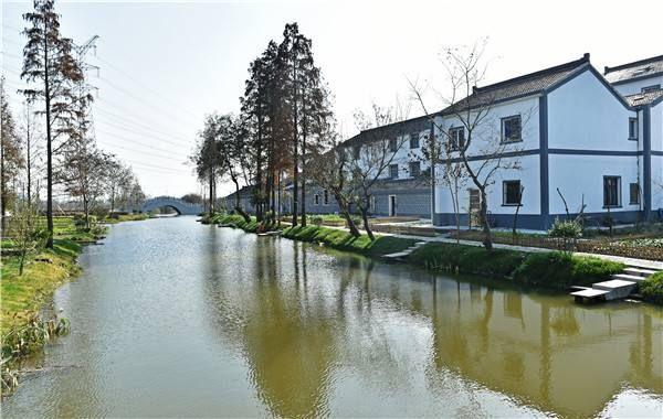 西夏墅镇梅林村图片