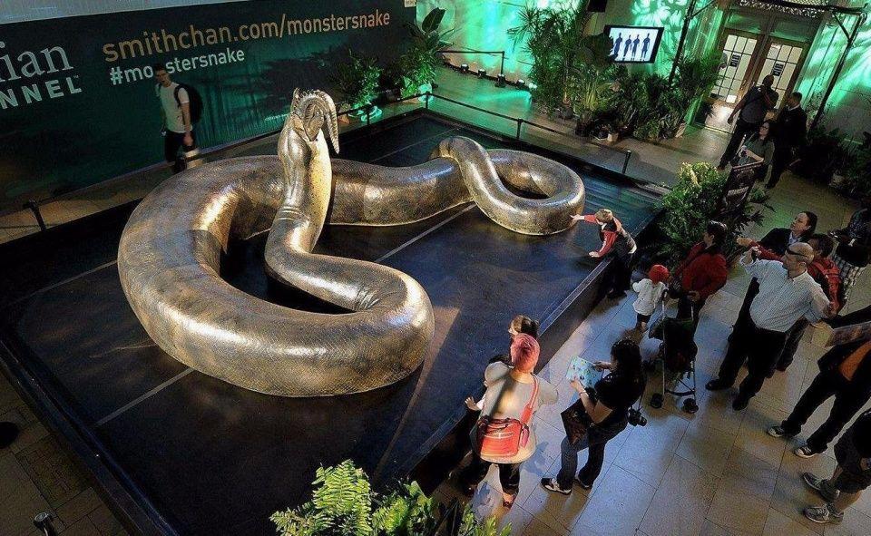 但是今天要介绍的世界上最大的蛇却要颠覆你的认识,它就是泰坦巨蟒.