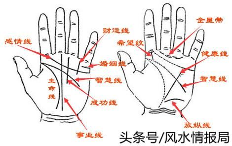 手纹掌纹学问大,正确认识手相的完整介绍