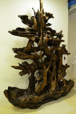 欣赏浪木根雕感受大自然的鬼斧神工