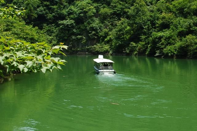 浦江有多美之白石灣風景區,林木蒼翠,溪瀑壯觀