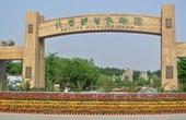北京野生动物园引名犬迎狗年 春节期间举办庙会
