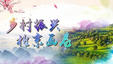 专题系列节目《乡村振兴 北京画卷》