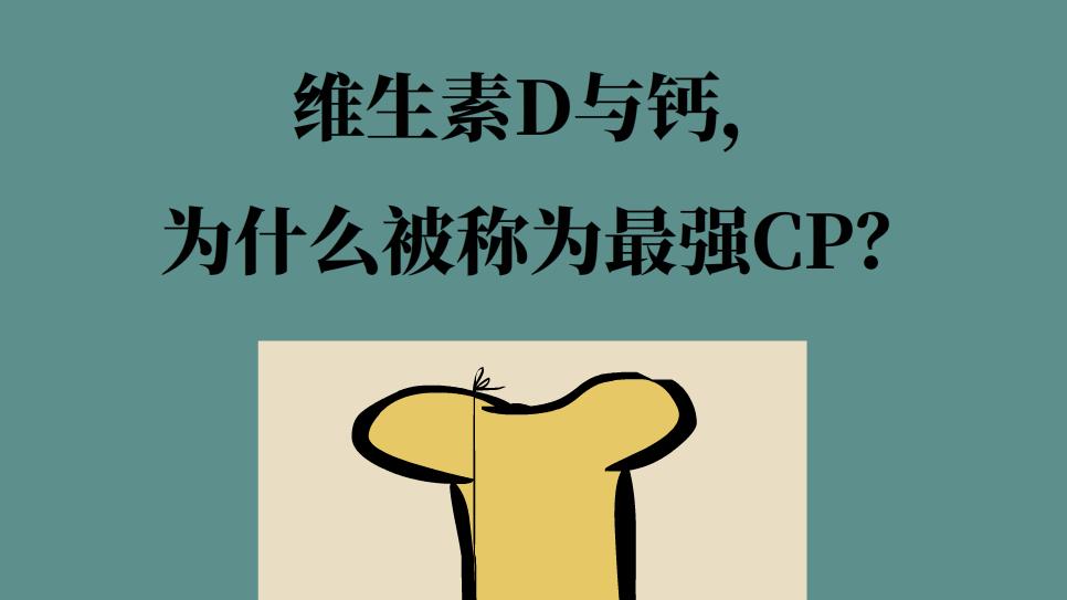 维生素D与钙,为什么被称为最强CP