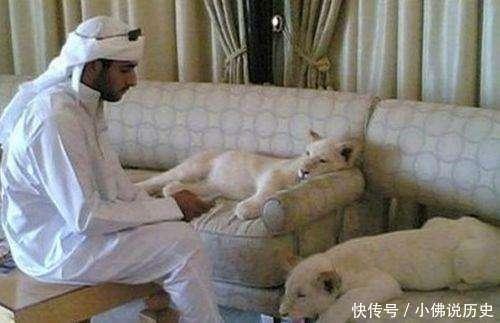 沙特阿拉伯与阿联酋都盛产富人, 可你知道他们