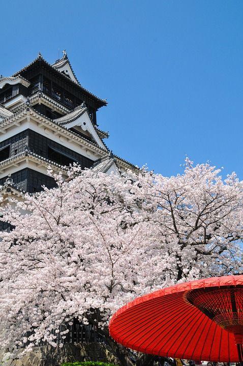 2018日本赏樱花最佳地点