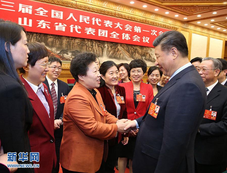 习近平参加山东代表团审议|公司新闻-张家口国特环保工程有限公司