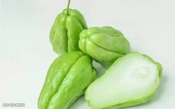 降压蔬菜种种养生!!! - 周公乐 - xinhua8848 的博客