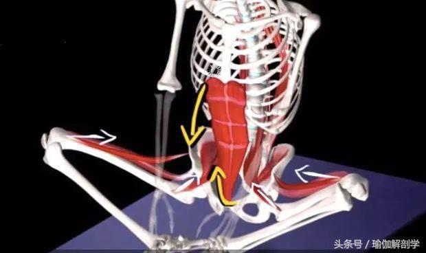 有效缓解经期疼痛的瑜伽束角式,你做对了吗?