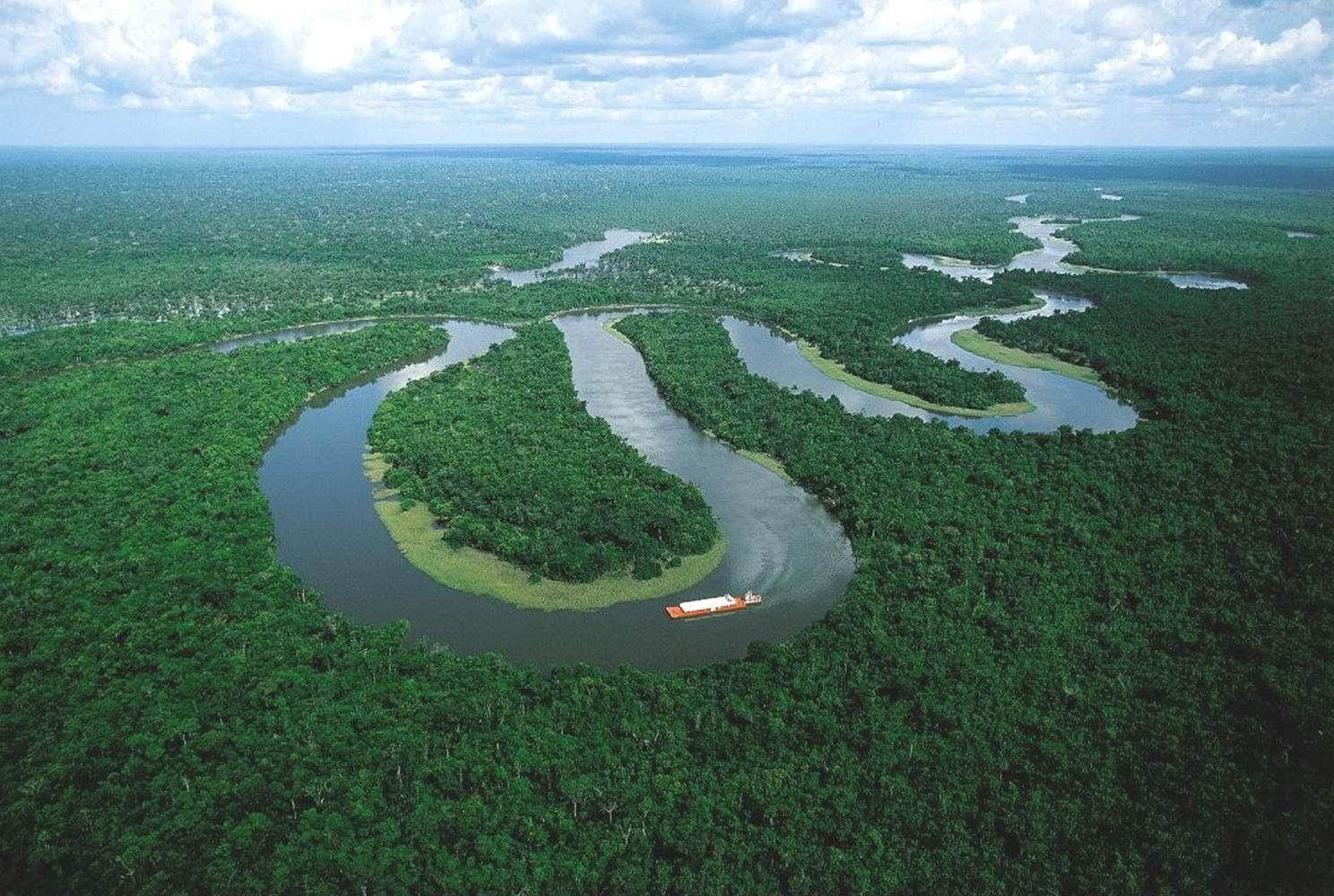 亚马逊河流最致命的5大生物