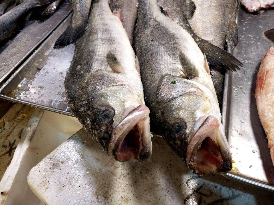 青岛海鲜日渐走俏 锅盖大鸦片鱼50一斤 特色搭配受欢迎