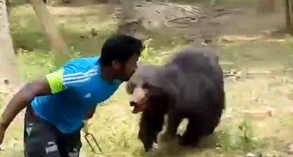 黑熊闯入果园咬死一对夫妻 愤怒村民将其乱棍打死! - 周公乐 - xinhua8848 的博客