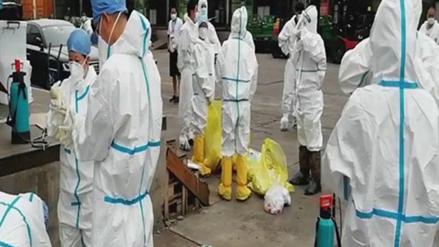 《众志成城 防控疫情》20200713锁定新发地的22小时