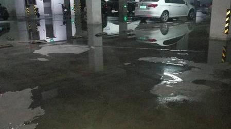 交房三年地下室频繁被淹 业主起诉江山帝景开发商